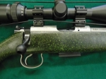 17HMR CZ 455 American Stainless Black & Green Package